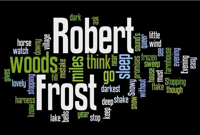 Blog: What do Plato, Jill Walker Rettberg, my American Lit professor and Robert Frost all have in common?