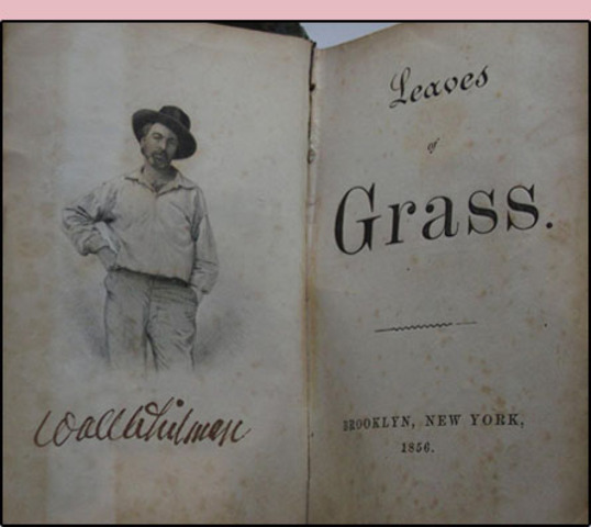 Leaves of Grass 1st Edition