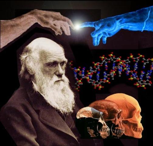 """Darwin y """"el origen de las especies"""""""