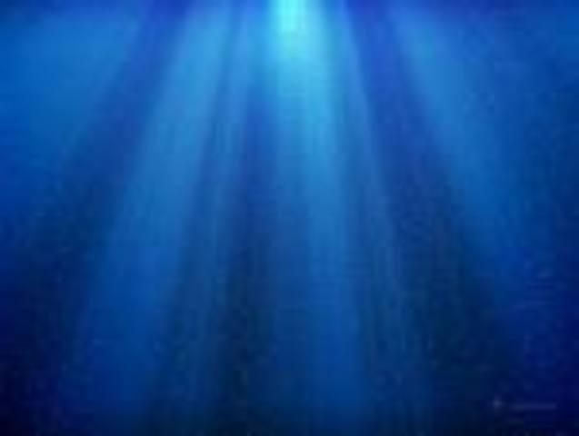 First underwater picture