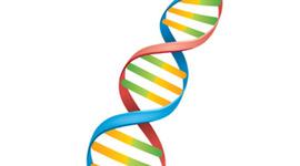 History of Genetics timeline