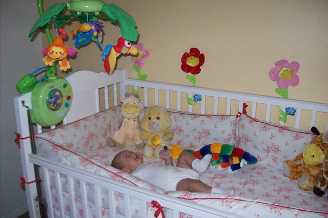1st night slept in crib