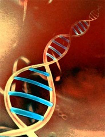 invencion del mapa de genoma humano