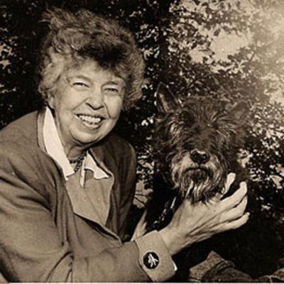 Women In History: Eleanor Roosevelt timeline