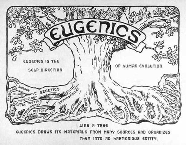 The eugenics movement is popular, fueling racist sentiment and leading to involuntary sterilization laws.