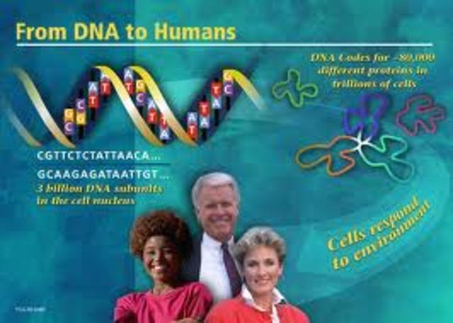 99% del genoma secuenciado