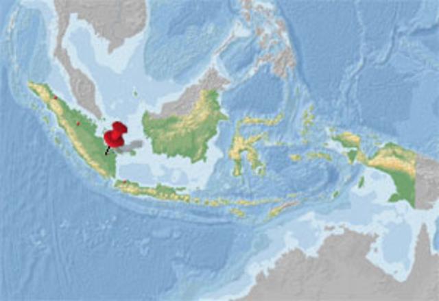 Conquest of Palembang