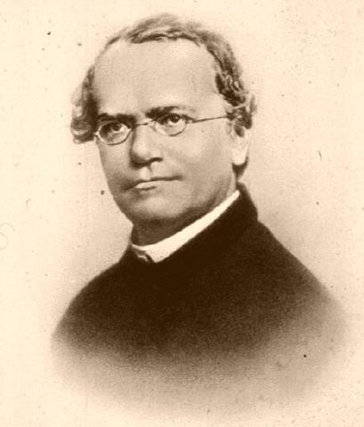 Gregor Mendel finds out how parents pass on discrete inheritable traits