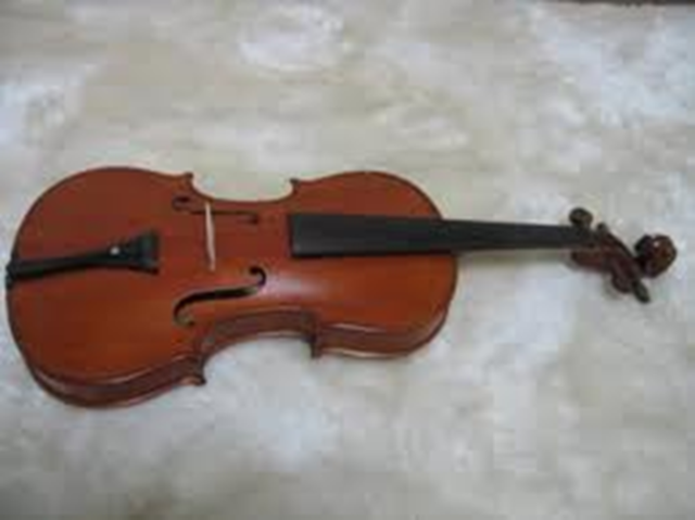Middle aged violin