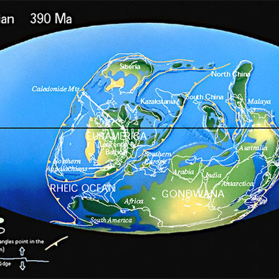 Devonian Time- 1 year=1 million years timeline