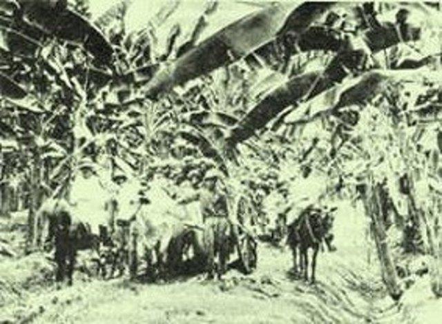 Huelga de United Fruit Company