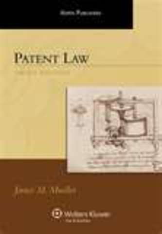 The first patent law was passed