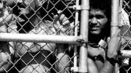 The number of asylum seekers arrived in Australia between 1976 to 2010 timeline