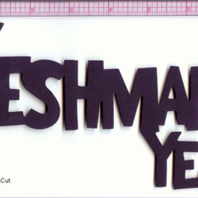 Freshman year 2011-2012 timeline