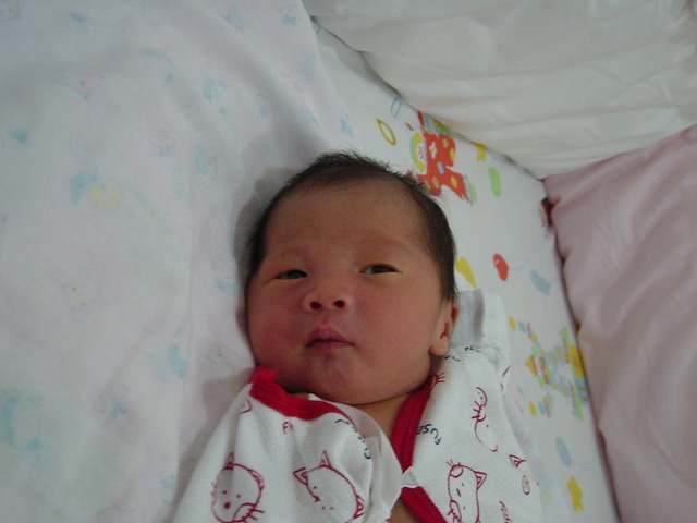 My Brother was Born