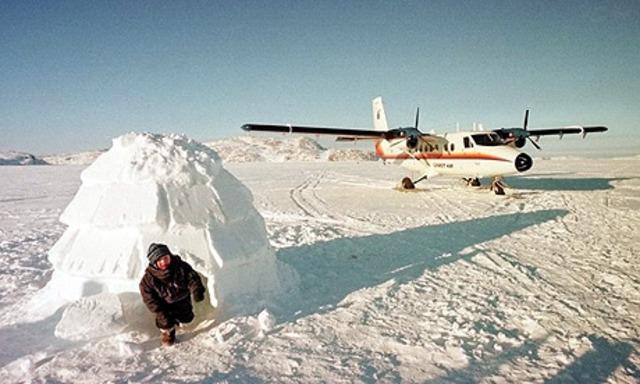 Modern Arctic