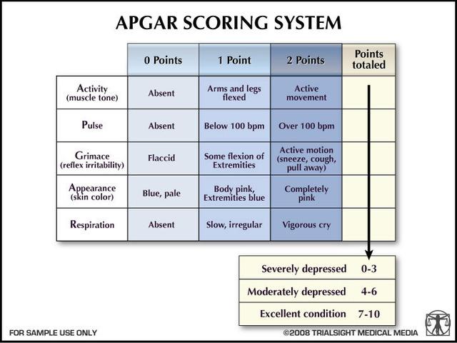 2.4 APGAR