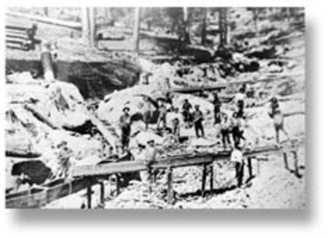 Califorina Gold Rush timeline | Timetoast timelines