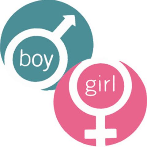 5.1 Kohlberg's and Gender