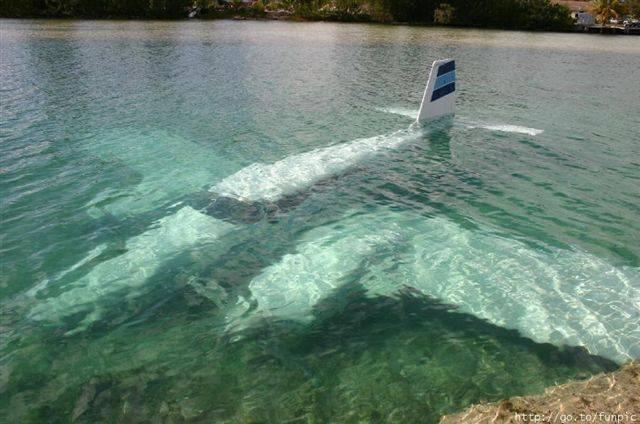 Brian's plane crashes