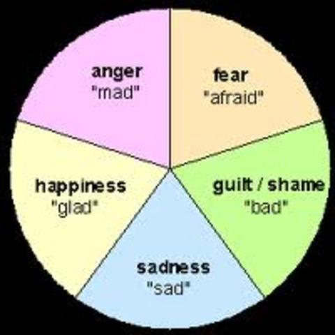 6.1 Basic Emotions