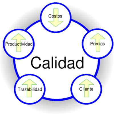 MI VIDA Y EL PROGRESO DE LA CALIDAD timeline