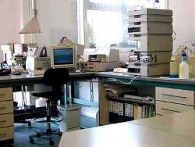 Primeros Laboratorios Entandares