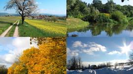 The Four Seasons timeline