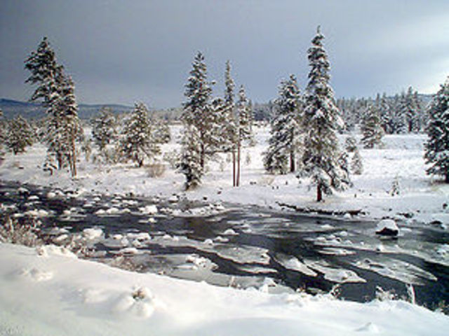 The Donner Party arrives at the Truckee River