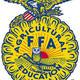 Ffa main emblem sm
