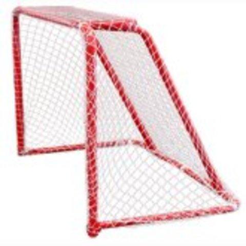 The Goal Net
