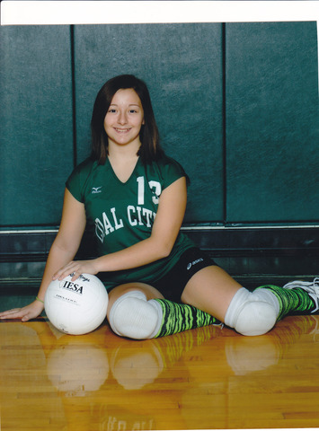 I made the school volleyball team!