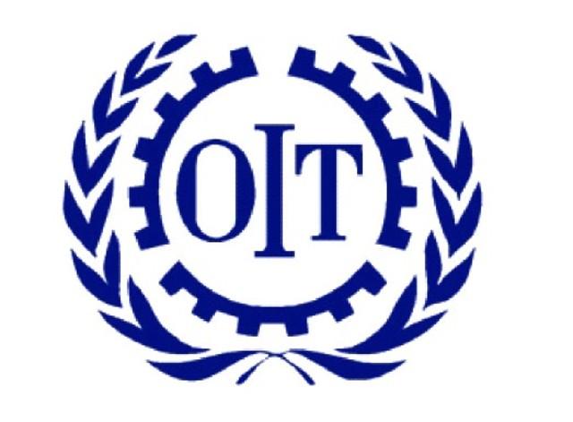 Constitucion de la Organizaci{on Internacional del Trabajo