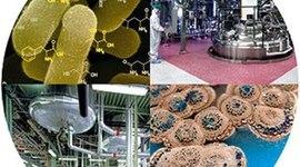 Biotechnology Timeline: Clarissa Martinez & Katherine Dang