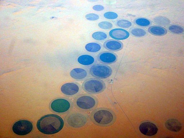 Libya granted independence