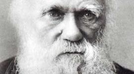 Charles Darwin\ Mario Rojas timeline