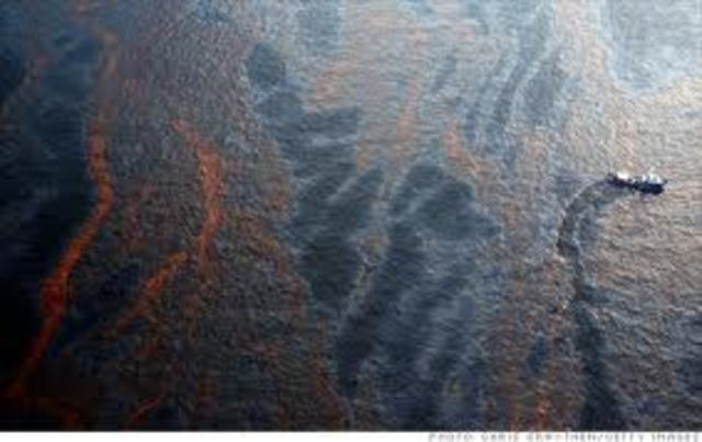The oil spill in the gulf of Mexico