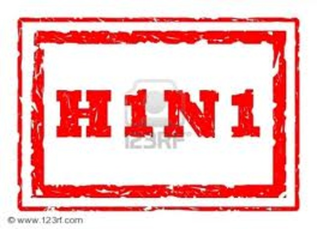 H1N1 Becomes a Pandemic