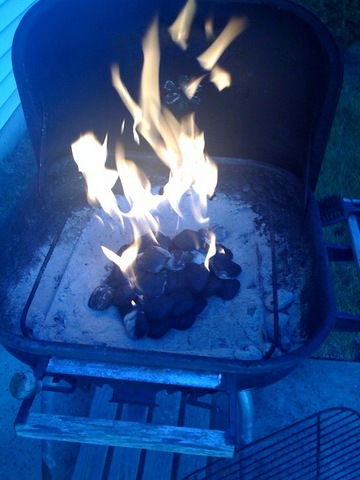 59. Learn How to Start a Grill