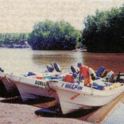 Pesca de Tiburon Pacifico de Guatemala. timeline