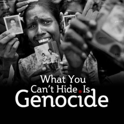 20th Century Genocide Timeline