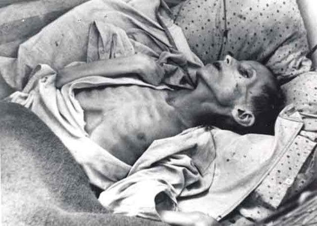 Holodomor (Started in 1932)