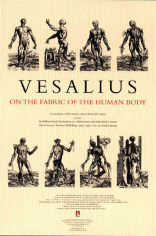 Andreas Vesalius Publishes The First Scientific Text on Human Anatomy.