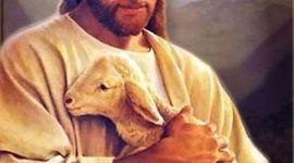 Jesus Life timeline