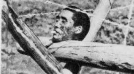 Nanjing Massacre timeline