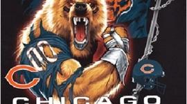 Da Bears version 2011 timeline