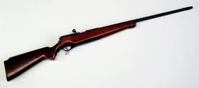 My first hunting shoutgun