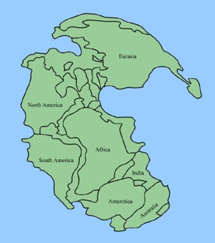 Pangea forms