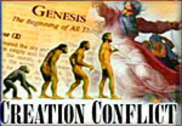 Strand 4 Education - Evolution