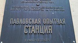 Павловская опытная станция: закон против морали timeline
